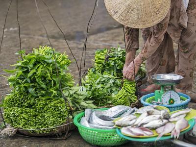 Vietnam, Quang Nam Province-Nigel Pavitt-Photographic Print