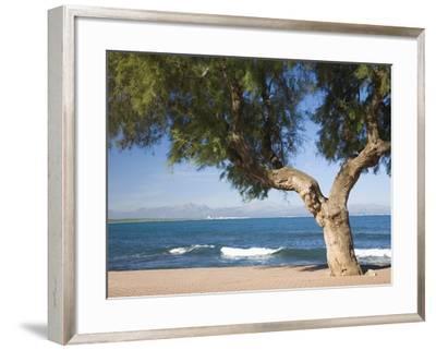 View across the Bay of Alcudia from Seafront Promenade, Colonia De Sant Pere, Near Arta, Mallorca,-Ruth Tomlinson-Framed Photographic Print