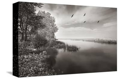 View from Big Cut Road-Steve Silverman-Stretched Canvas Print