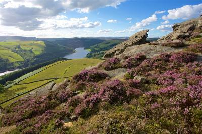 View from Derwent Edge, Peak District National Park, Derbyshire, England, United Kingdom, Europe-Frank Fell-Photographic Print