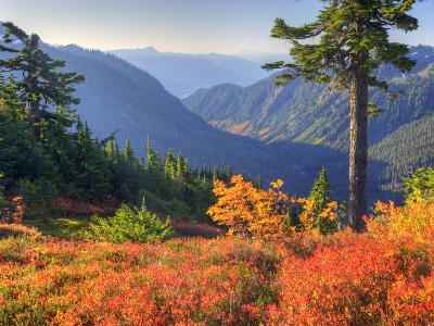 View from Kulshan Ridge, Heather Meadows Recreation Area, Washington, Usa-Jamie & Judy Wild-Photographic Print