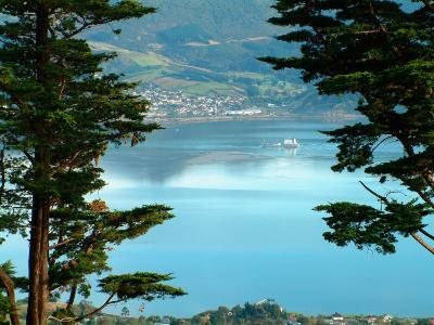 View From Larnach Castle, Oamaru, New Zealand-William Sutton-Photographic Print