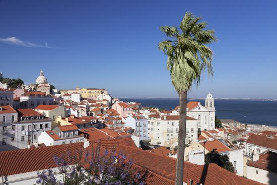 View from Santa Luzia viewpoint over Alfama district to Tejo River, Lisbon, Portugal, Europe-Markus Lange-Photographic Print