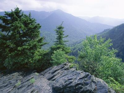 View from the Alum Cave Bluffs Trail in Great Smoky Mountains National Park, Tennessee, USA-Robert Francis-Photographic Print