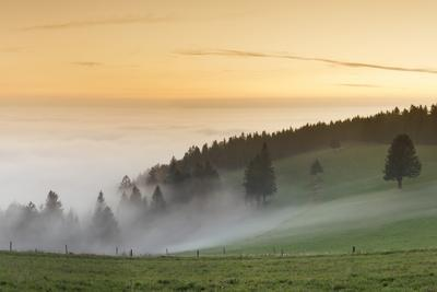 https://imgc.artprintimages.com/img/print/view-from-the-schauinsland-over-the-rhine-plain-at-fog-black-forest-baden-wurttemberg-germany_u-l-q1ey6aj0.jpg?p=0