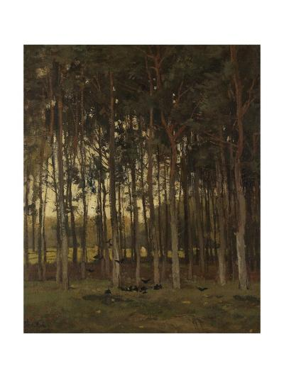View in the Woods, C. 1870-1904-Theophile de Bock-Giclee Print
