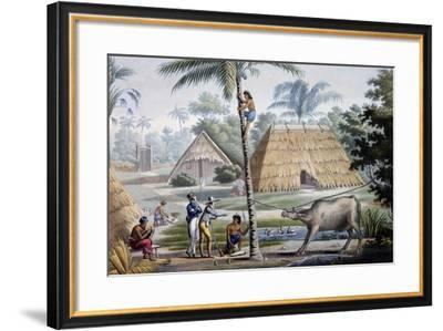 View Nearby Coupang, Timor Island, Engraving from Painting by Alphonse Pellion--Framed Giclee Print