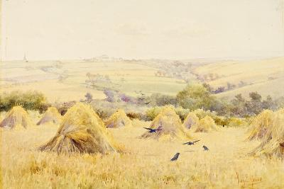 View of a Cornfield with Rooks-Harry E. James-Giclee Print