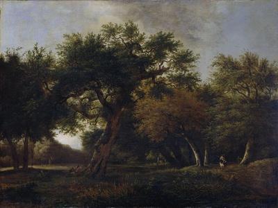 https://imgc.artprintimages.com/img/print/view-of-a-forest_u-l-q114qlr0.jpg?p=0