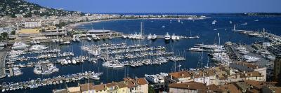 View of a Harbor, Cannes, Provence-Alpes-Cote D'Azur, France--Photographic Print