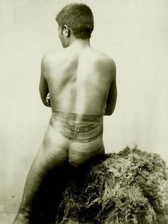 View of a Samoan Pe'A Tattoo, 19th Century--Photographic Print