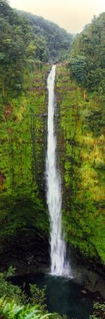 View of a Waterfall, Akaka Falls, Akaka Falls State Park, Hawaii County, Hawaii, USA
