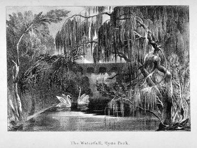 View of a Waterfall and Two Swans in Hyde Park, London, C1820--Giclee Print