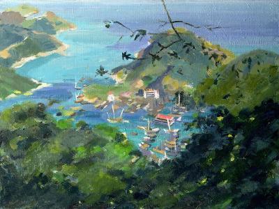 View of Aberdeen from the Peak, Hong Kong-Anne Durham-Giclee Print