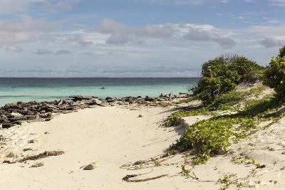 View of Beach and Sea of Zanj, Ihla Das Rolas, Mozambique-Alida Latham-Photographic Print