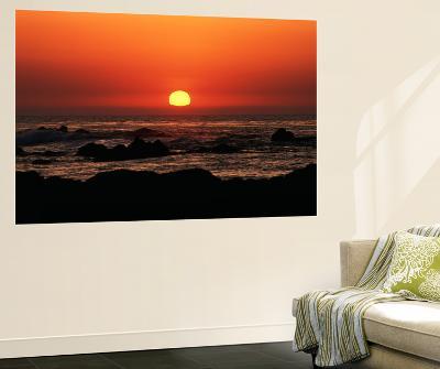 View of Beach at Sunset, Pacific Grove, Monterey Peninsula, California, USA-Stuart Westmorland-Giant Art Print