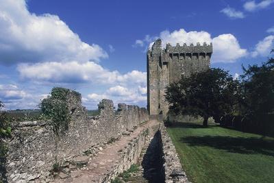 View of Blarney Castle, County Cork, Ireland--Giclee Print