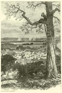 View of Chattanooga and the Federal Encampment, November 1863
