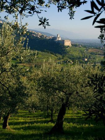 https://imgc.artprintimages.com/img/print/view-of-church-of-san-francesco-assisi-unesco-world-heritage-site-umbria-italy-europe_u-l-pxuf980.jpg?p=0