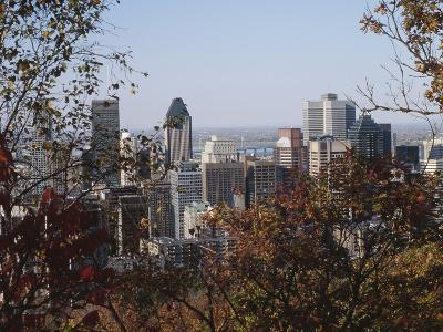 View of City Though Trees - Architecture Montreal--Photographic Print