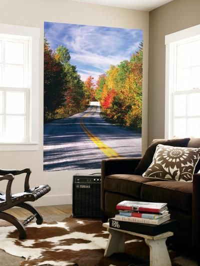 View of Country Road, Fall Foliage, Northeast Kingdom, Vermont, USA-Walter Bibikow-Wall Mural