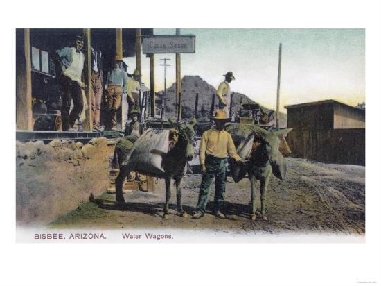 View of Donkeys Carrying Water - Bisbee, AZ-Lantern Press-Art Print