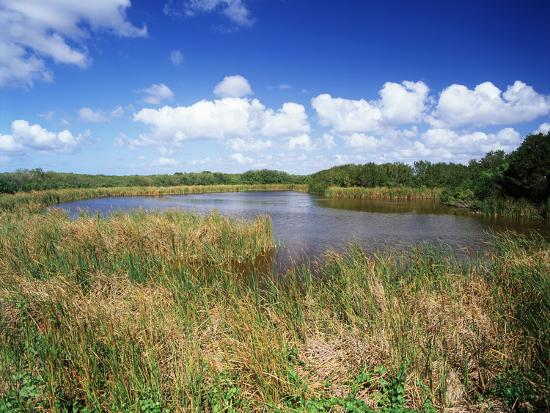 View of Eco Pond, Everglades National Park, Florida, USA-Adam Jones-Photographic Print