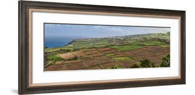 View of farmland along coast, Terceira Island, Azores, Portugal--Framed Photographic Print