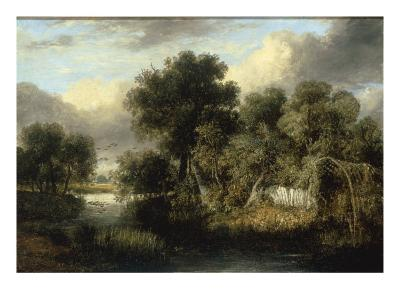 View of Fritton Decoy, Norfolk-James Stark-Giclee Print