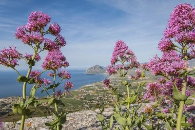 View of Golfo Di Bonagia from Erice-Guido Cozzi-Photographic Print