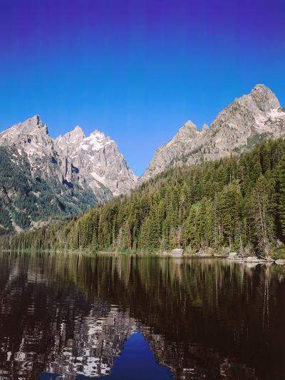 View of Grand Teton and Mount Owen Reflected in Calm Waters of Jenny Lake-Jeff Foott-Photographic Print