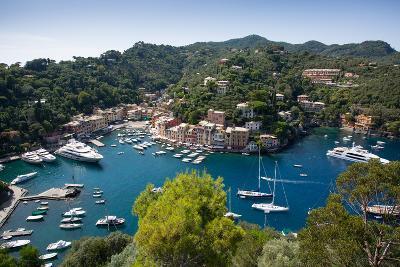 View of Harbour from Castle, Portofino, Genova (Genoa), Liguria, Italy, Europe-Frank Fell-Photographic Print
