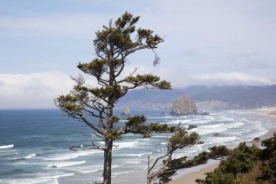 View of Haystack Rock and Cannon Beach, from Highway 101, Oregon, USA-Jamie & Judy Wild-Photographic Print