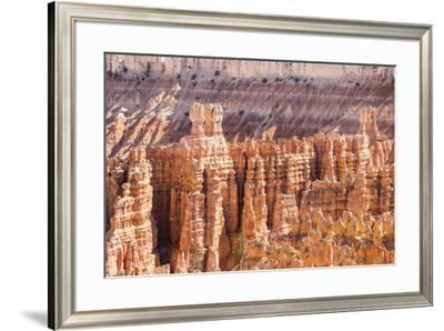 View of hoodoo formations from the Navajo Loop Trail in Bryce Canyon National Park, Utah, United St-Michael Nolan-Framed Photographic Print