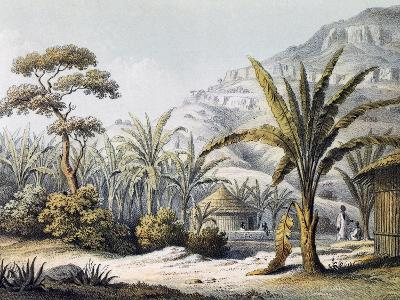 View of Huts in Enzet, Musa, Engraving from Travels of Martin Theodor Von Heuglin--Giclee Print