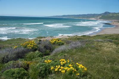 View of Jalama Beach County Park, Near Lompoc, California, United States of America, North America-Ethel Davies-Photographic Print