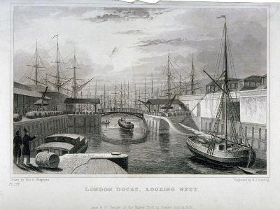 View of London Docks Looking West, Wapping, 1831-MJ Starling-Giclee Print