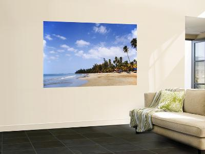 View of Luquillo Beach, Puerto Rico, Caribbean-Dennis Flaherty-Wall Mural