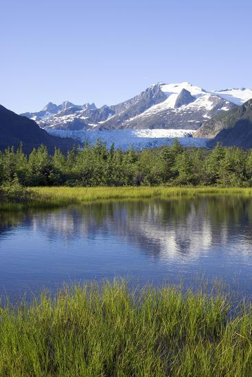 View of Mendenhall Glacier with Pond and Green Grass in Foreground Juneau Southeast Alaska Summer-Design Pics Inc-Photographic Print