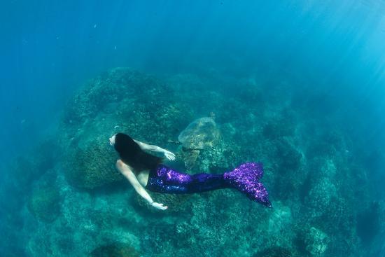 View of Mermaid Swimming in Ocean, Hawaii, USA--Photographic Print