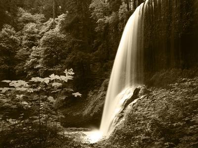View of Middle North Falls, Silver Falls State Park, Oregon, USA-Adam Jones-Photographic Print