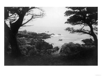 View of Monterey Bay from 17 Mile Drive - Carmel, CA-Lantern Press-Art Print