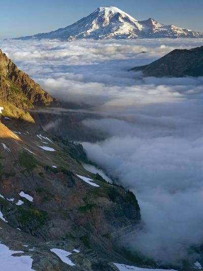 View of Mt. Rainier Above the Clouds from the Goat Rocks Wilderness, Washington, USA-David Cobb-Photographic Print