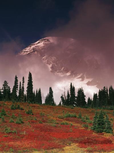 View of Mt. Rainier National Park, Washington, USA-Stuart Westmorland-Photographic Print