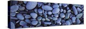 View of Pebbles, Sandymouth Beach, Cornwall, England