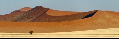 View of Red Dunes, Sossusvlei, Namib Desert, Namib-Naukluft National Park, Namibia--Photographic Print