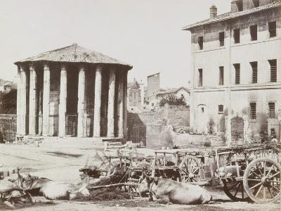 View of Rome--Photographic Print