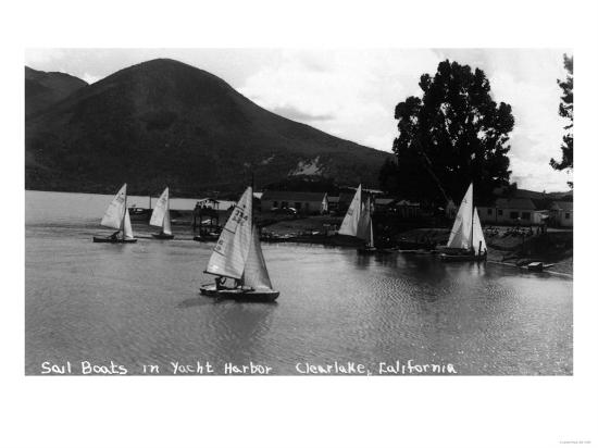 View of Sail Boats in Yacht Harbor - Clear Lake, CA-Lantern Press-Art Print