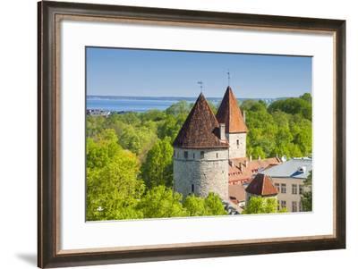 View of Tallinn from Toompea Hill, Old Town of Tallinn, Estonia, Baltic States-Nico Tondini-Framed Photographic Print