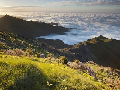 View of Terxeira to Canario, Sea of Clouds, Madeira, Portugal-Rainer Mirau-Photographic Print